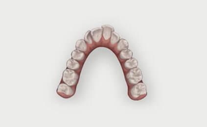 Blossom Dental